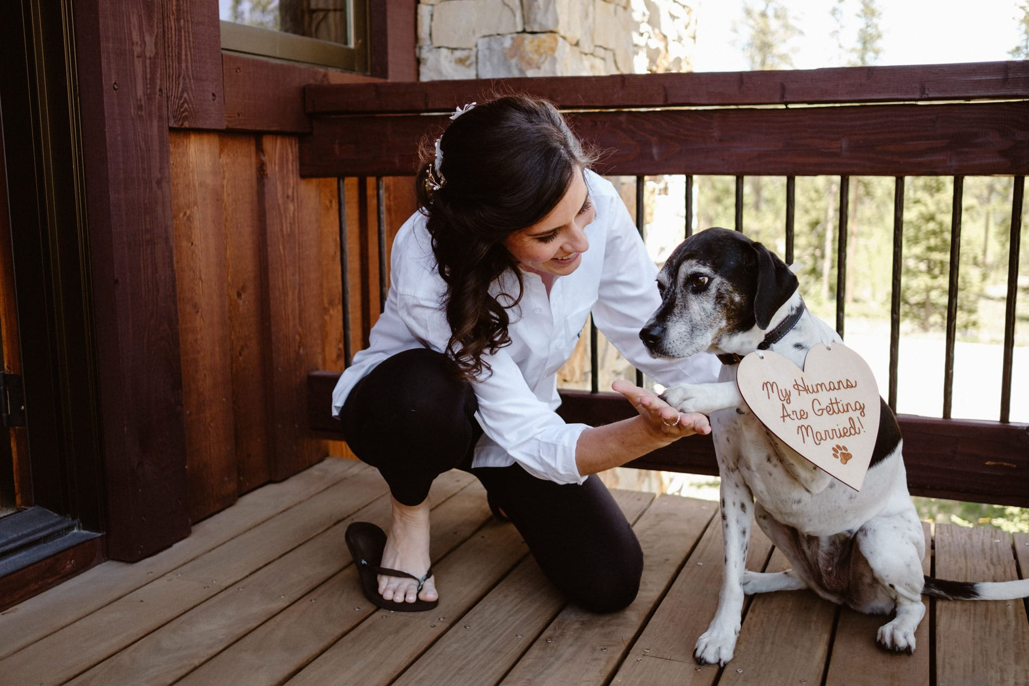 "Bride and her dog getting ready for wedding, dog wearing sign that says ""my humans are getting married"""