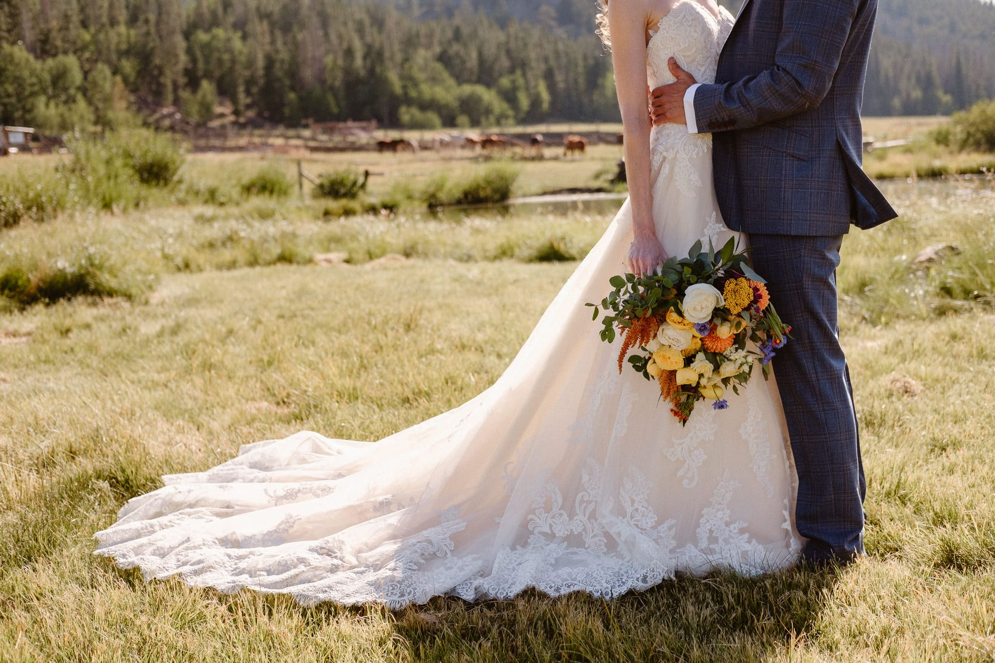 Red Feather Lakes elopement photographer, Colorado intimate cabin wedding, bride and groom portraits in mountain meadow, hazy light wedding portraits