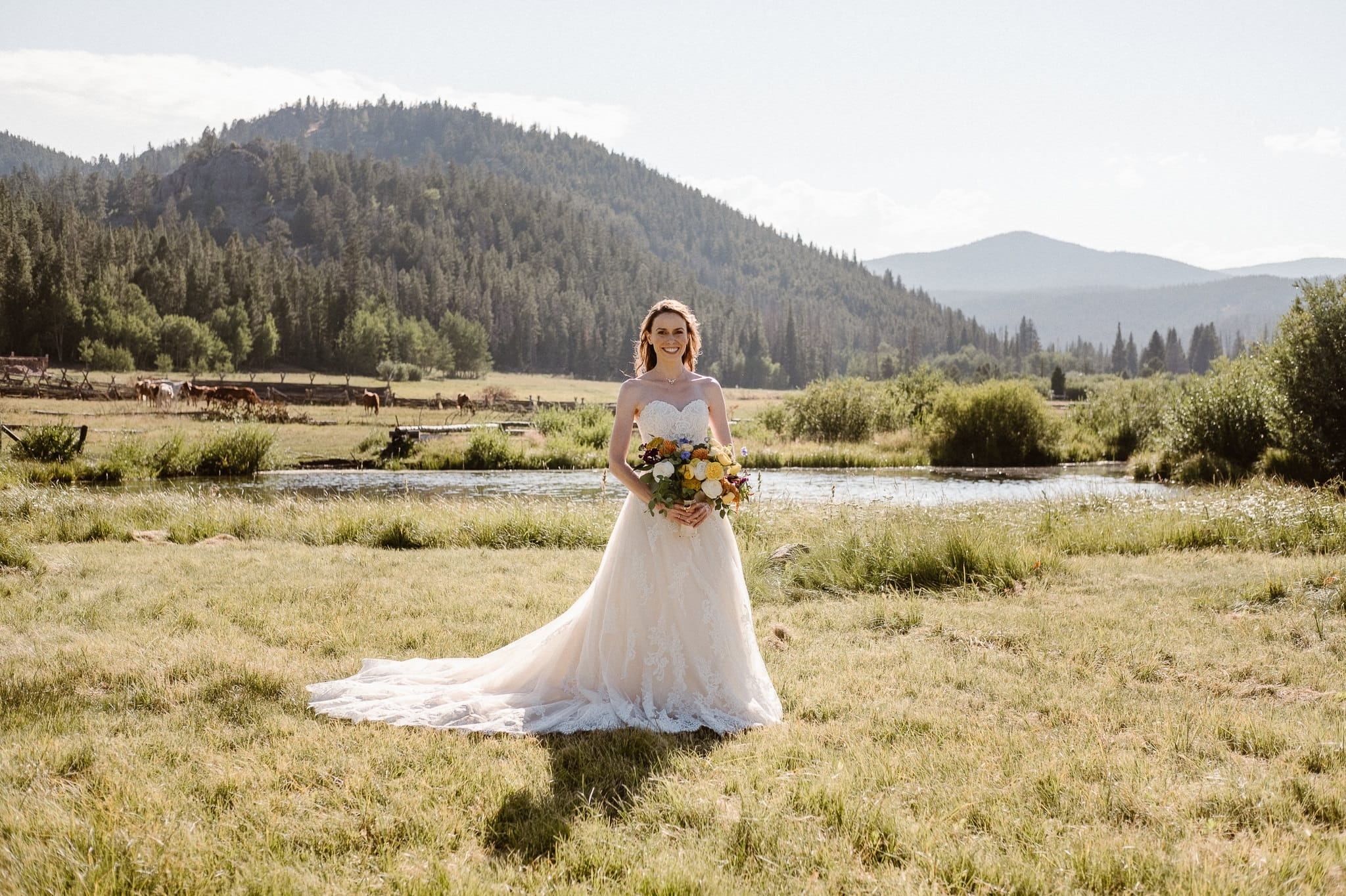 Red Feather Lakes elopement photographer, Colorado intimate cabin wedding, bridal portraits in mountain meadow