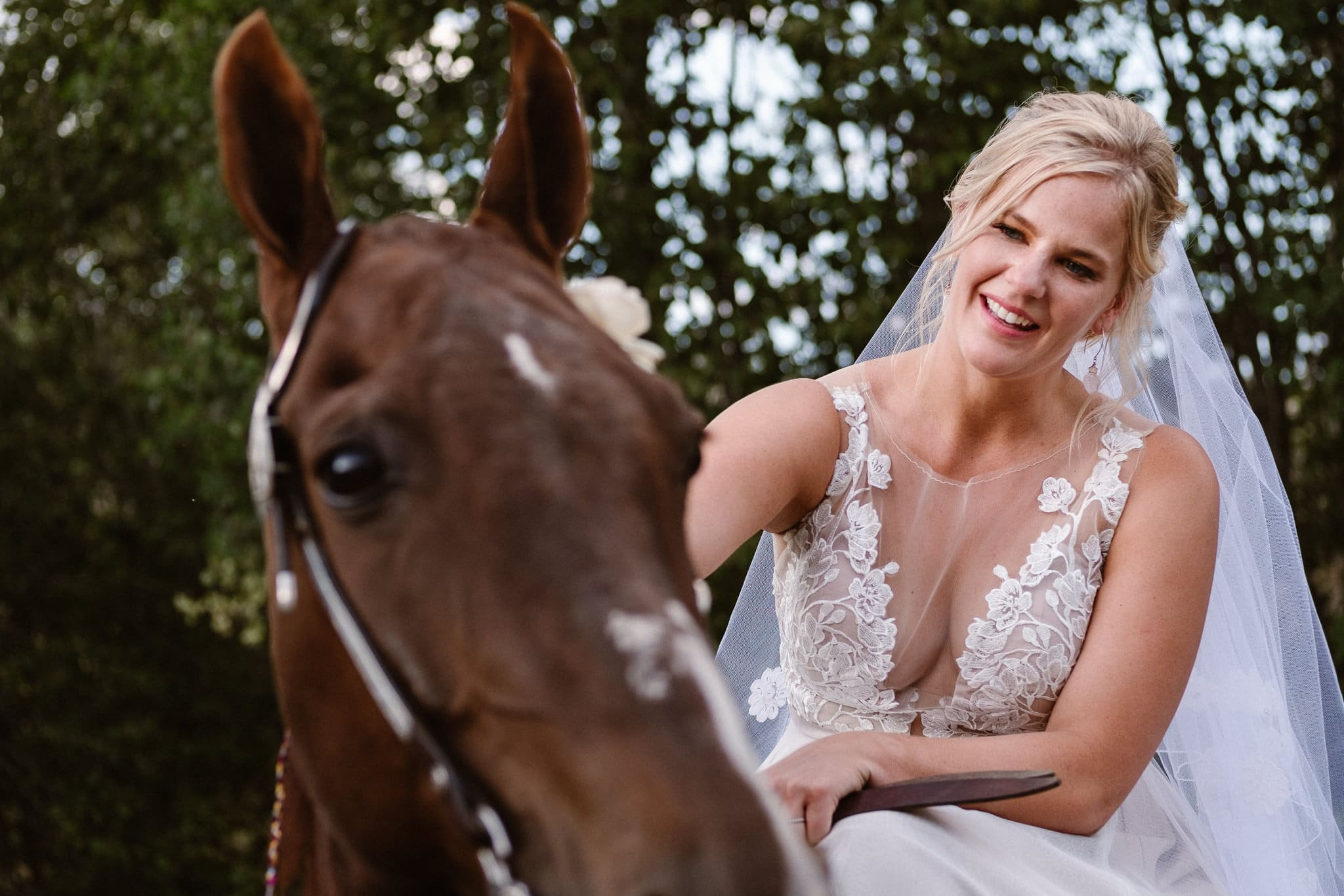 Steamboat Springs wedding photographer, La Joya Dulce wedding, Colorado ranch wedding venues, outdoor wedding ceremony, Colorado wedding, Rocky Mountain wedding, ranch wedding, bride petting horse