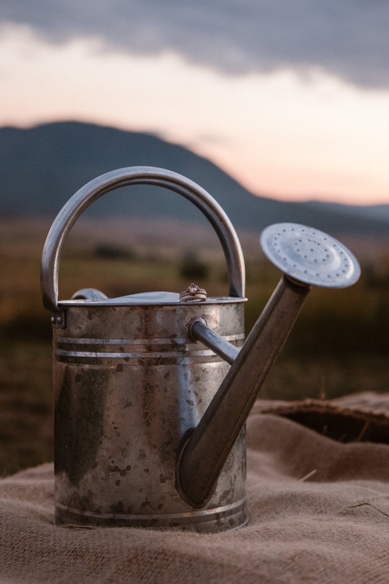Steamboat Springs wedding photographer, La Joya Dulce wedding, Colorado ranch wedding venues, wedding rings on top of watering can