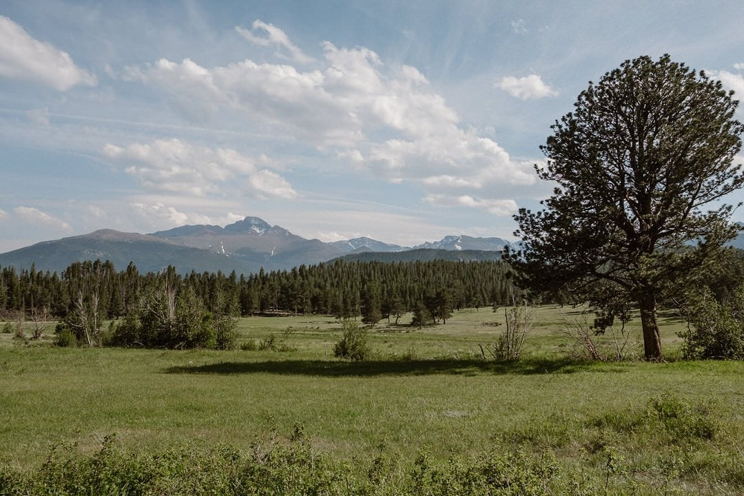 Upper Beaver Meadows in Rocky Mountain National Park wedding locations, elopement location in RMNP