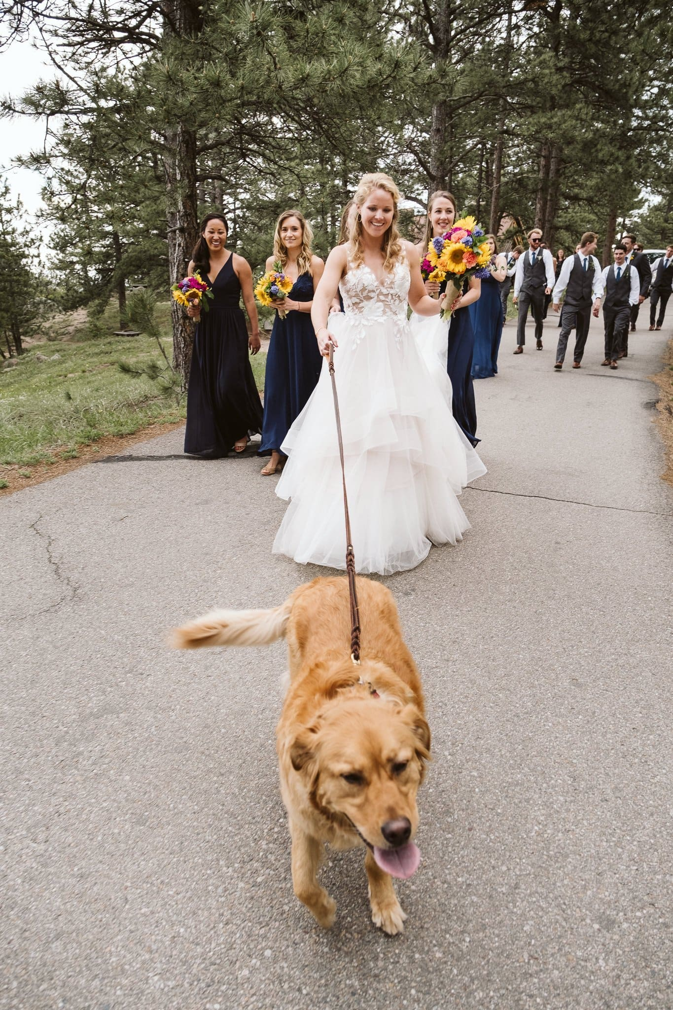 Bride walking her dog on Flagstaff Mountain in Boulder after a wedding ceremony at Sunrise Amphitheater