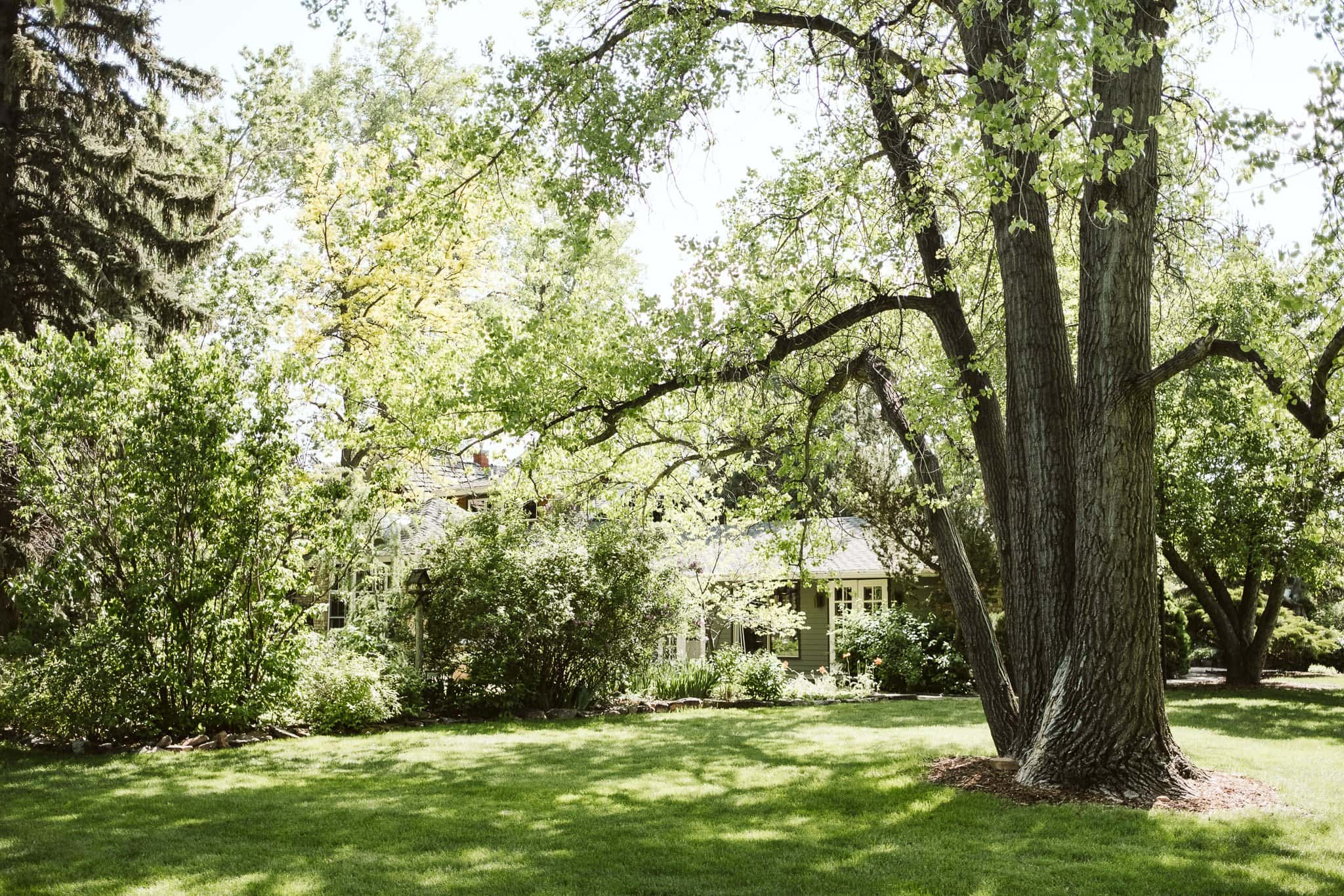 haystack-hearth-wedding-venue-niwot-10