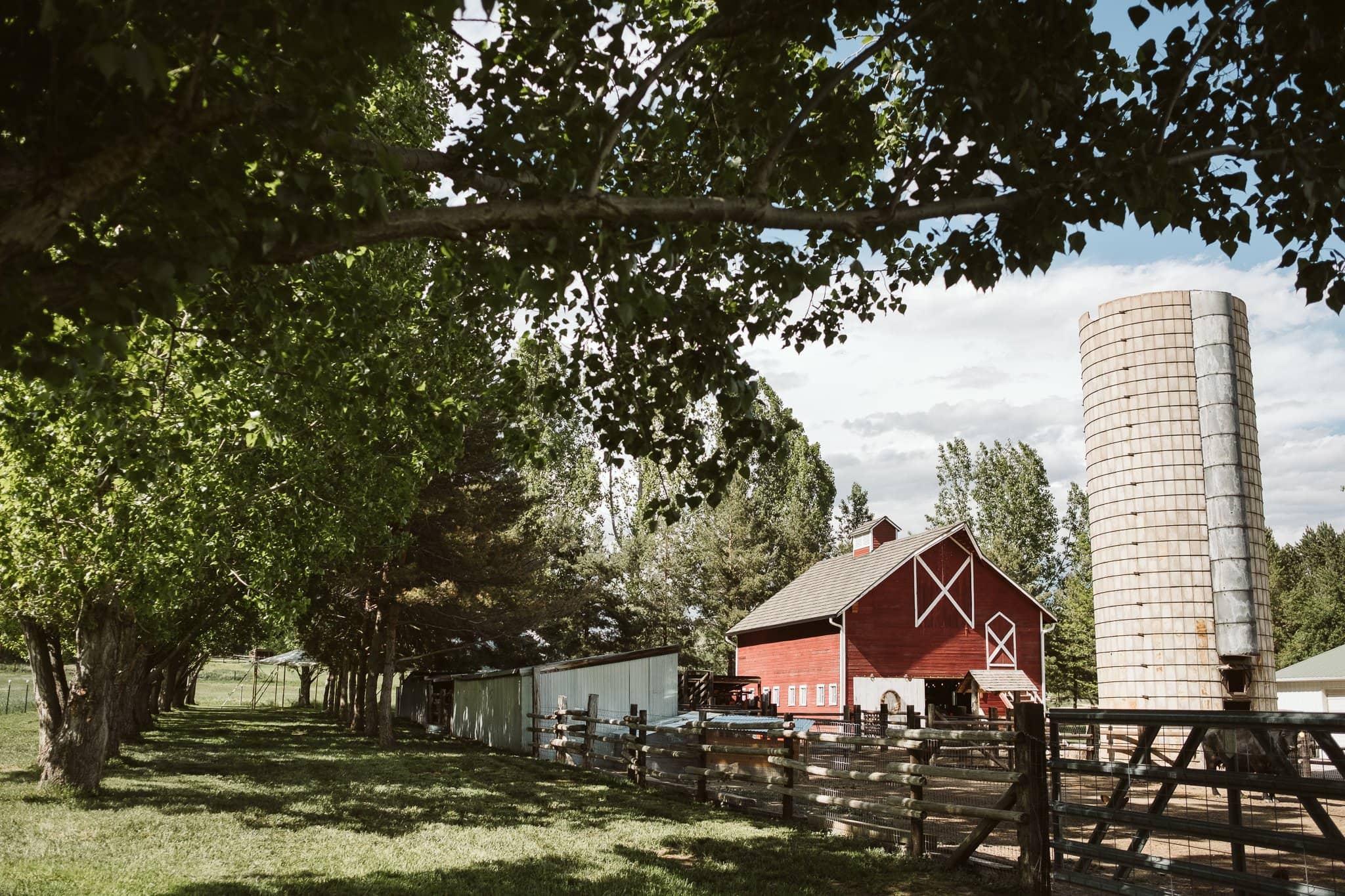 milston-well-farm-wedding-venue-boulder-17