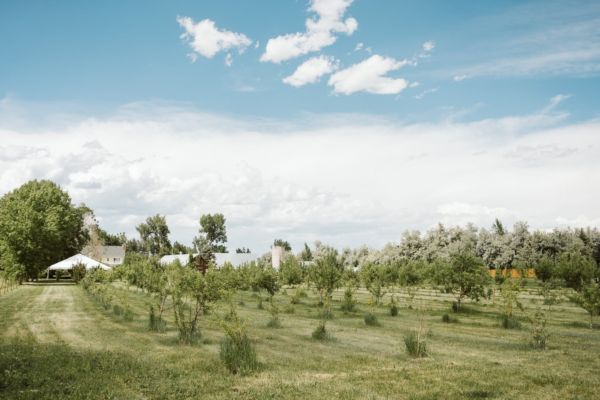 ya-ya-farm-orchard-lyons-wedding-venue-11