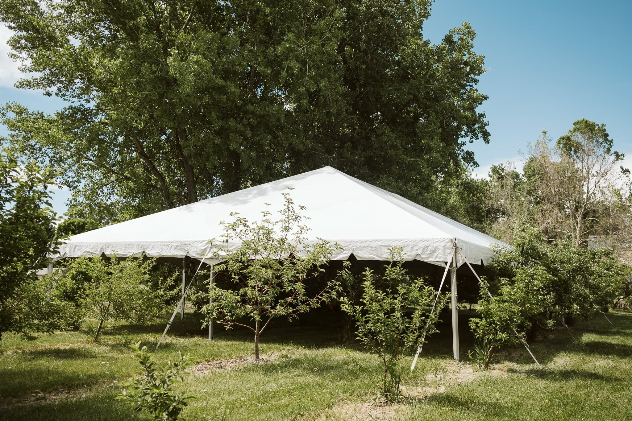 ya-ya-farm-orchard-lyons-wedding-venue-4