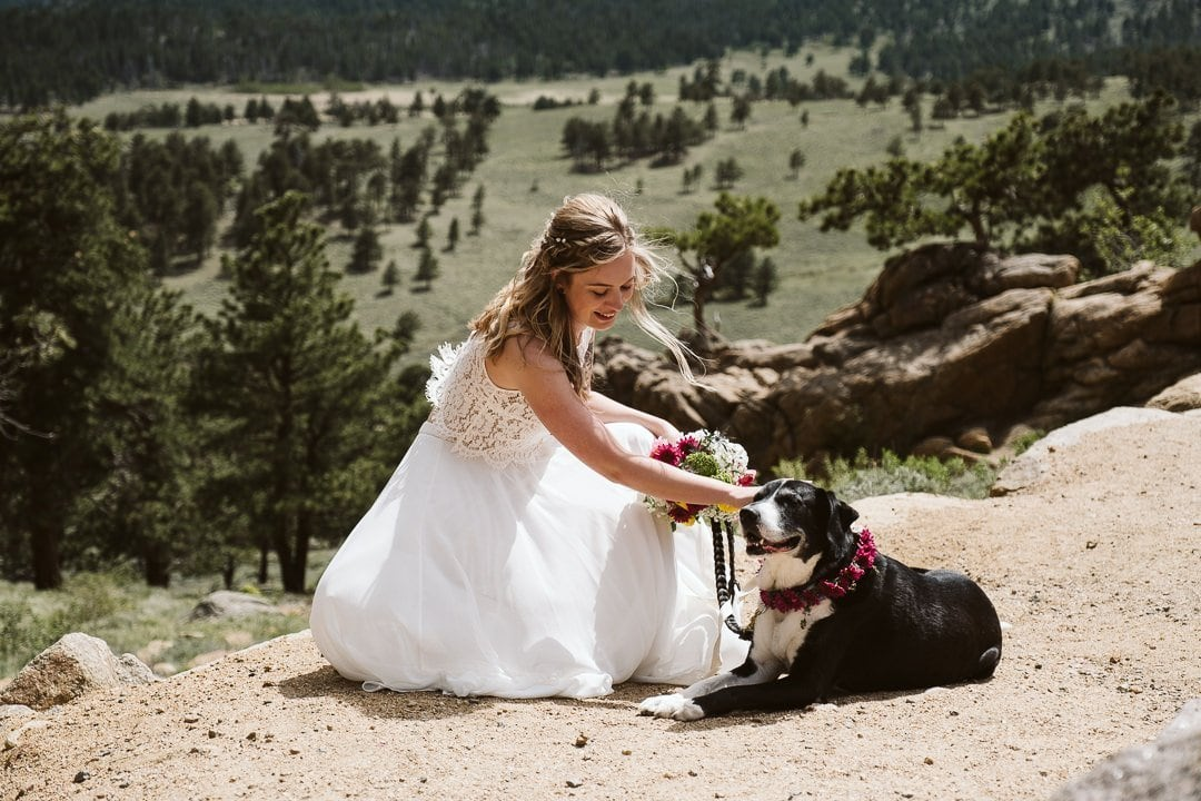 Bride with her dog in the mountains of Colorado, Rocky Mountain National Park elopement photographer