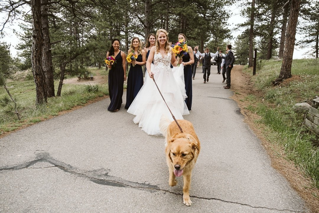 Bride and bridesmaids walking with dog on Flagstaff Mountain in Boulder after Sunrise Amphitheater wedding ceremony, Colorado wedding photographer