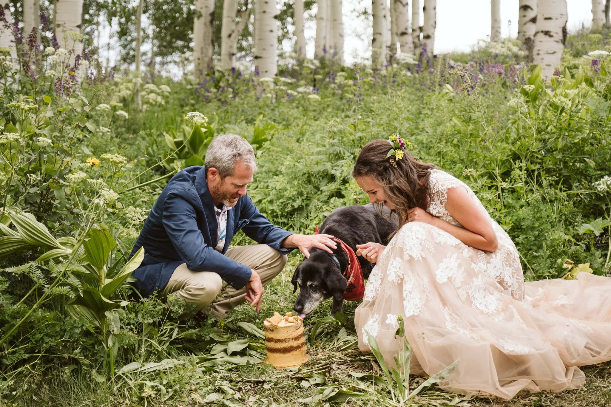 Bride and groom with their dog, dog birthday cake