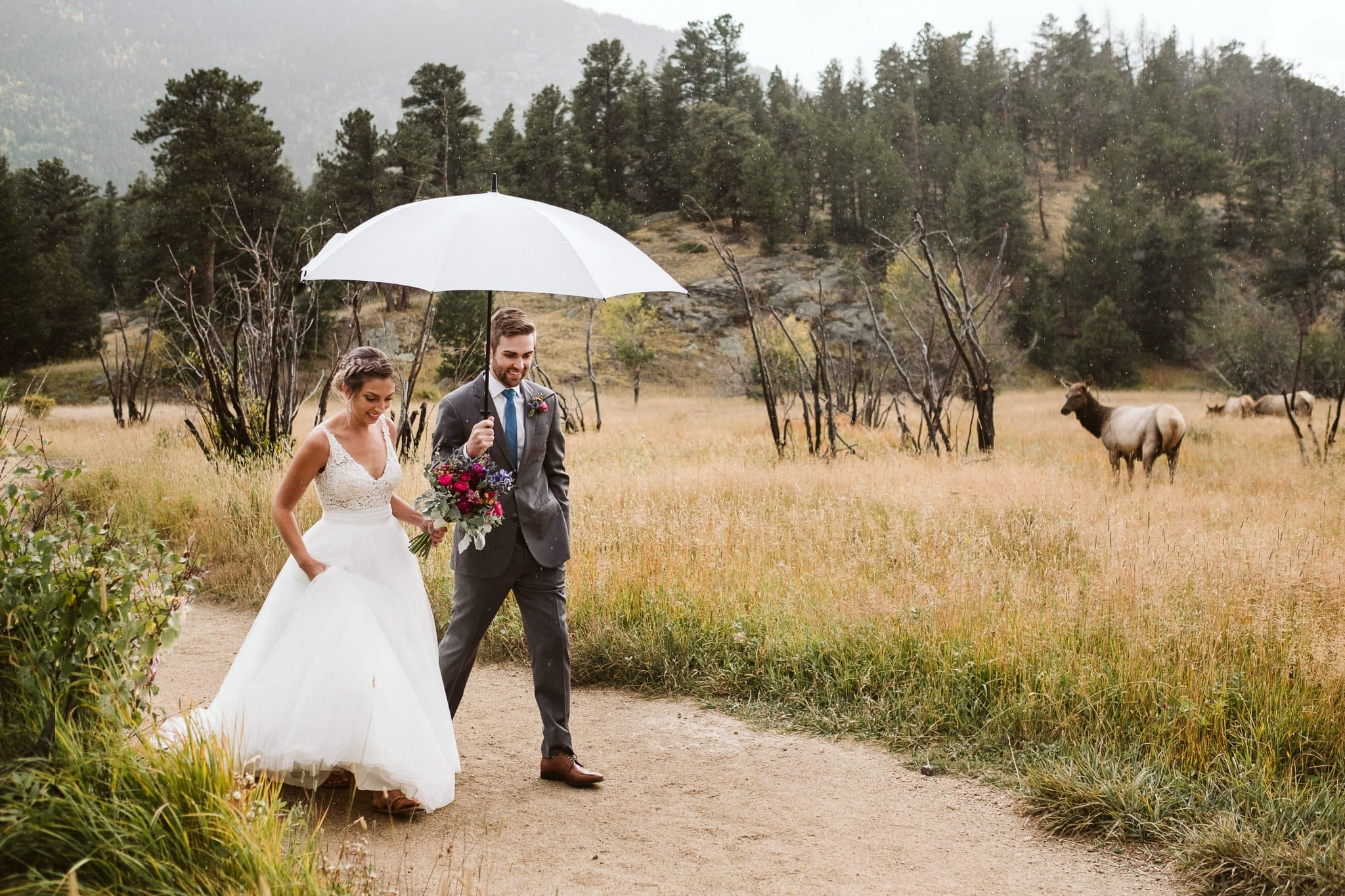Rocky Mountain National Park elopement in Colorado