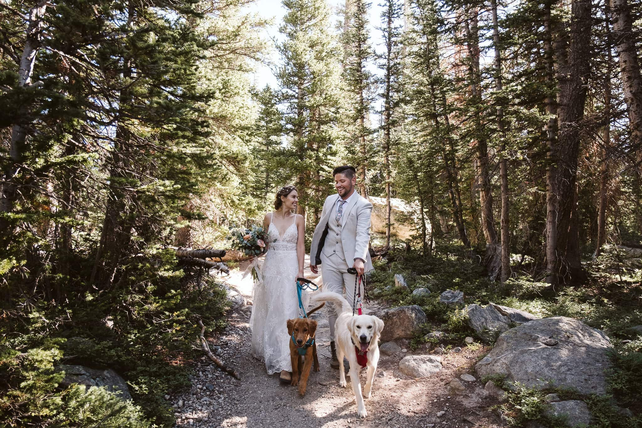 Hiking elopement with dogs in Colorado