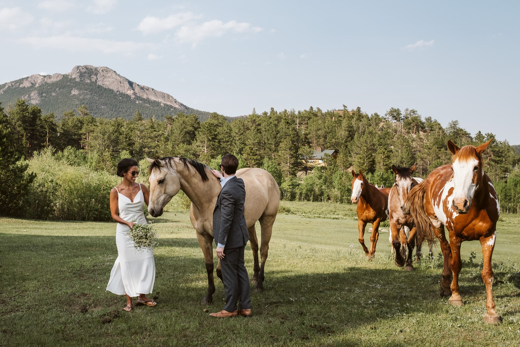 Colorado wedding with horses at Meeker Park Lodge in Allenspark